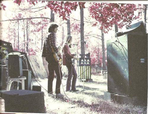 At the Mudcrutch Farm Festival, 1971