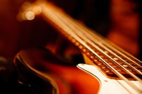 Revenge Of The Unzedded Bass Riffers