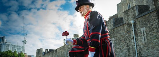 Yeoman-Warder-plants-first-poppy